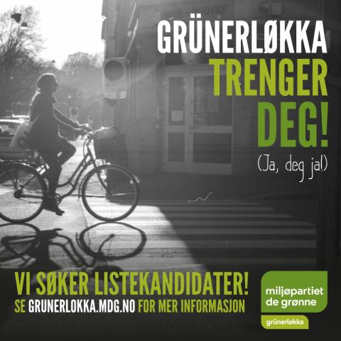 15.02.27.Lokka_trenger_deg